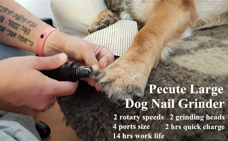 dog toenail grinder