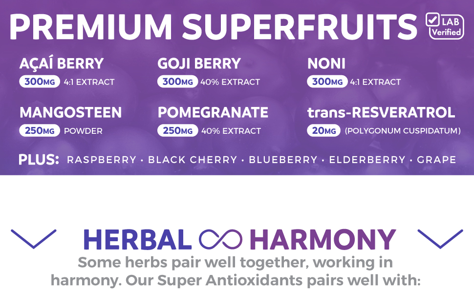 Acai Extract, Goji Berry Extract, Noni Fruit Extract, Magnosteen, Pomegranate Extract Supplement