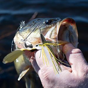 fishing  jigs spinner baits