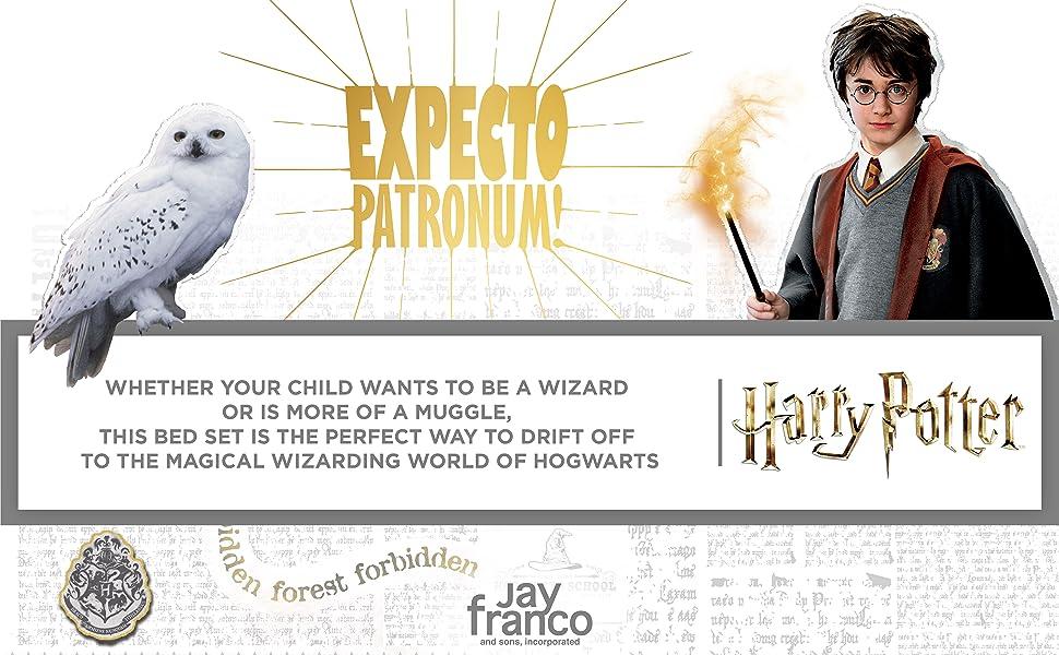 Harry Potter, Expecto Patronum