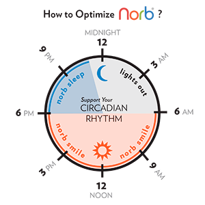 circadian rhythm, norb