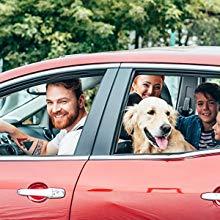 enfant chien chat véhicule automobile voiture siège poussette nouveau-né Mercedes-Benz Classe C Mini Audi A3