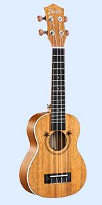 ukulele professional pack