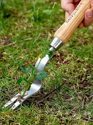 Berryamp;Bird Garden Hand Weeding Fork
