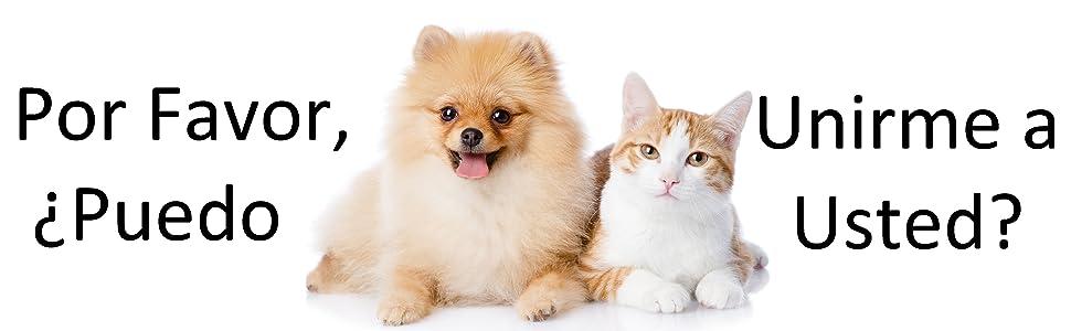 sudadera con capucha con bolsa de canguro para gato perro guinea pequeñas mascotas mujeres transpir