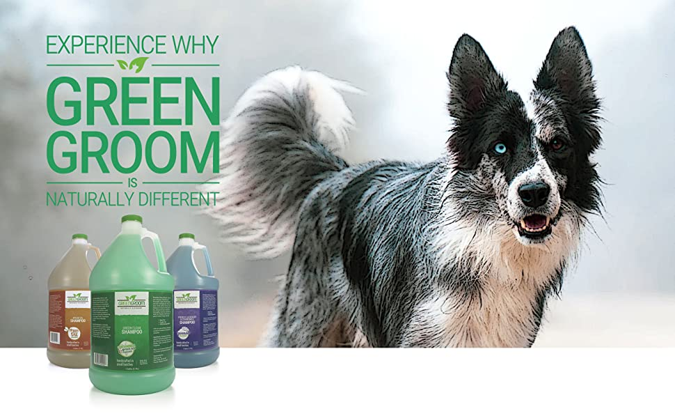 experience-why-green-groom-is-naturally-different