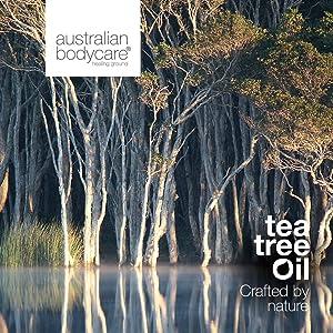 tea tree australian