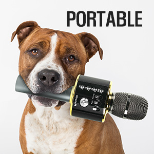 Portable Mic turn anywhere into your karaoke party