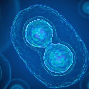 Vitamina C Liposomal Complex de 1000 mg con Zinc, cobre y selenio, complejo líquido de apoyo inmunológico para adultos y niños, sabor cítrico y ...