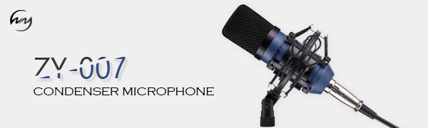 zingyou microphone