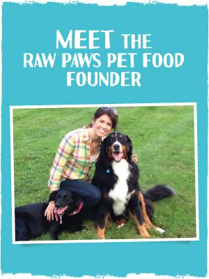 rabbit treat for dogs healthy dog treats no grains raw dog training treats raw paws dog treats beef