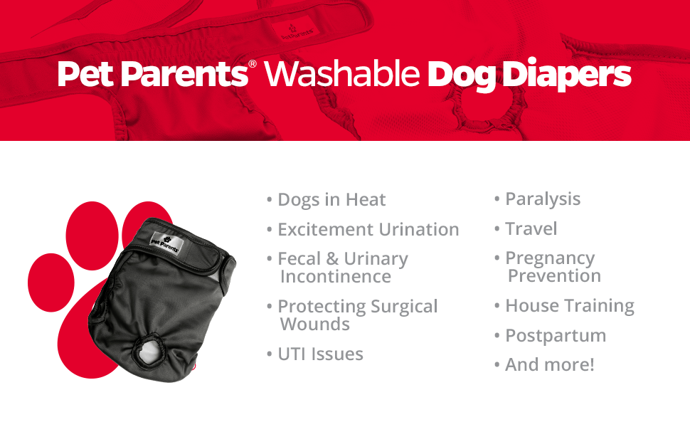 Washable male dog diapers