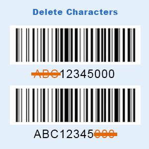 program scanner delete character
