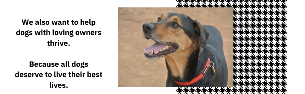 We also want to help dogs with loving owners thrive.