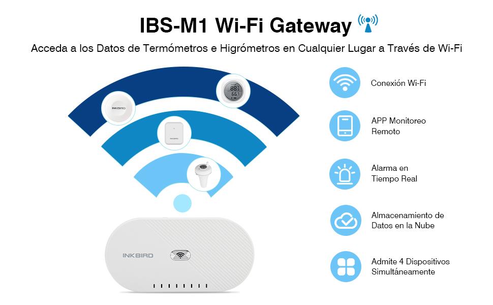 IBS-M1 Gateway
