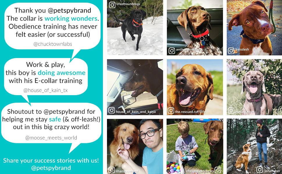 PetSpy Happy Customers