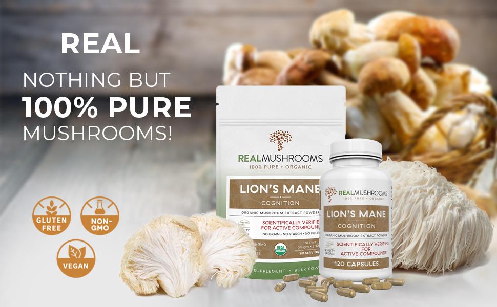 organic lions mane mushroom extract capsules