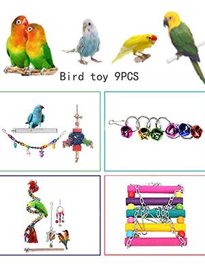 Parrot Swing Chew Toy