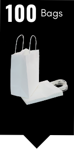 PI11021 white paper gift bags