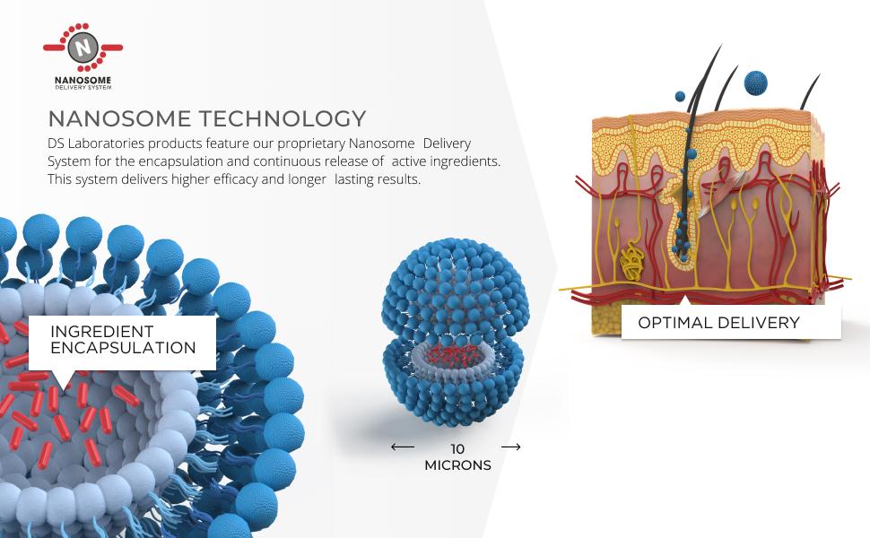 nanosome