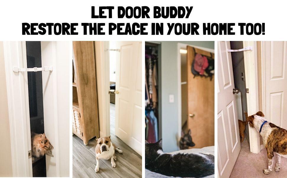 PET GATE WITH CAT DOOR ALTERNATIVE