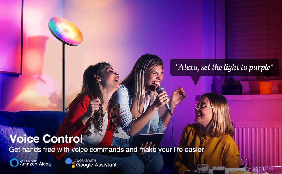 Vioce Control Display About Smart Wifi Floor Light