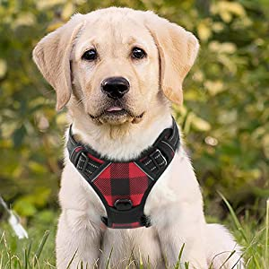 rabbitgoo dog harness np pull large medium small all weather breeds use comfortable reflective vest
