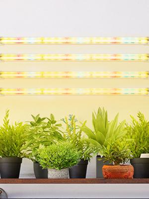 T5 grow light