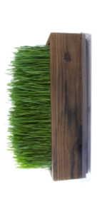 wheatgrass planter brown