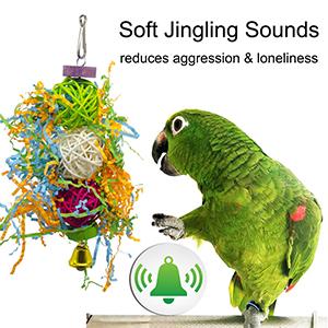 ringneck parrot toys