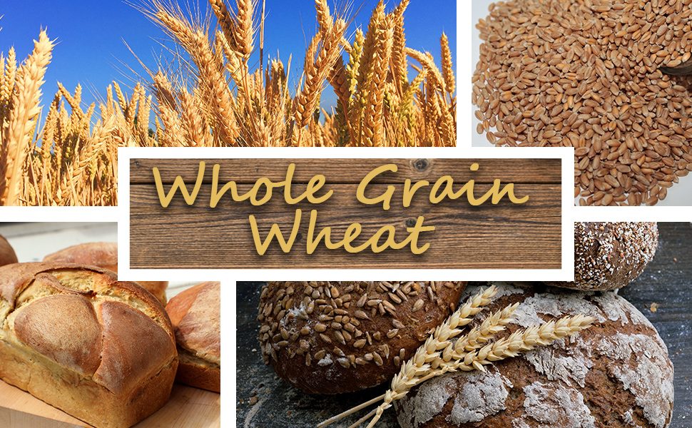 "raw wheat in a field, wheat kernels, and wheat bread with text, ""Whole Grain Wheat."""
