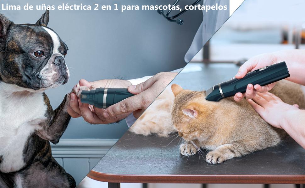 BASEIN Lima de uñas para Mascotas 2 en 1, cortapelos para Mascotas, Carga USB, Conexiones de 2 velocidades y 3 tamaños, Adecuada para cortaúñas para Perros pequeños, medianos y Grandes: Amazon.es: Productos para mascotas