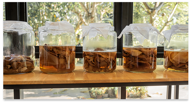second secondary 2f first ferment primary bottle conditioning indicadores product pocket essentials