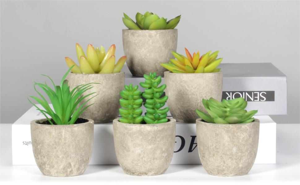 face plant decor