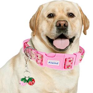 dog collar bells