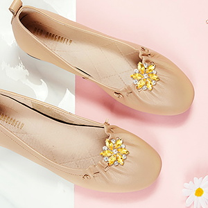 Shoe Clips for flats