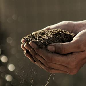 Image of hands holding a small mound of soil on a farm