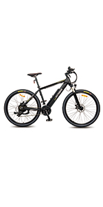 electric bike 750w