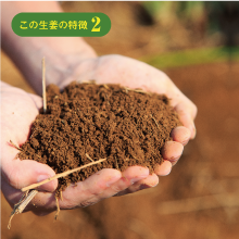 優しくて強い、フカフカな土から生まれる。