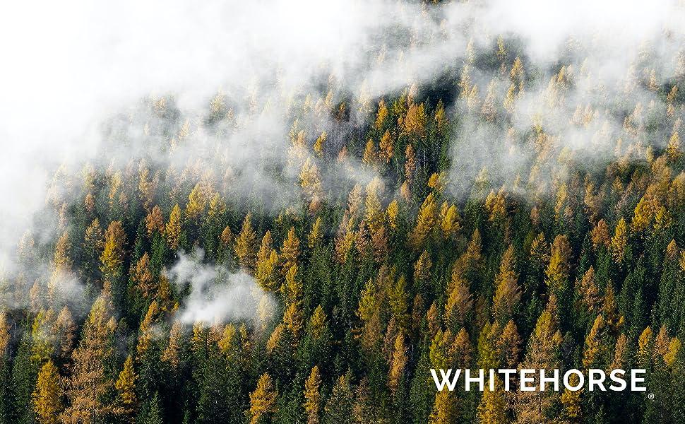 WHITEHORSE certified cedar bat houses