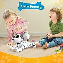 Auto Demo