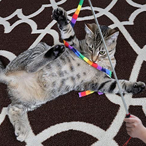 Bluemary Interactive Cat Toys for Indoors 6 Piece, Rainbow Cat String Toy
