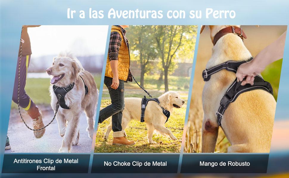 rabbitgoo Arnes Perro Ajustable Grande Mediano Pequeño Arnés Pecho ...