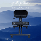 great posture chair