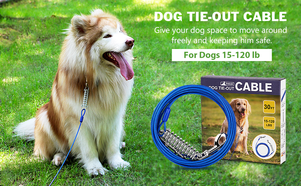 dog tie-out cable