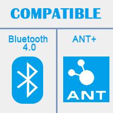 Bluetooth e ANT+.