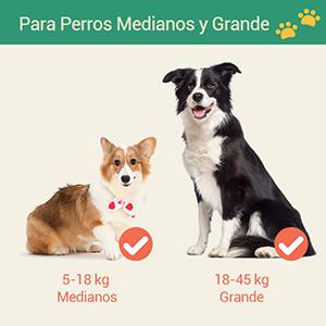 Happy & Polly Correa Retráctil para Perro 5m, Correa Elástica para ...