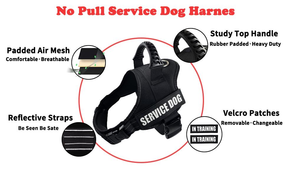 dihapet Service DOg Vest