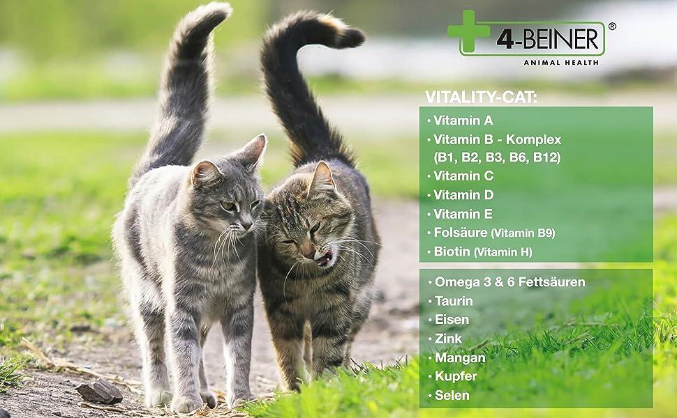 VITALITY-CAT Multivitamine Mineralstoffe Spurenelemente Omega 3 Omega 6  B Vitamine Taurin