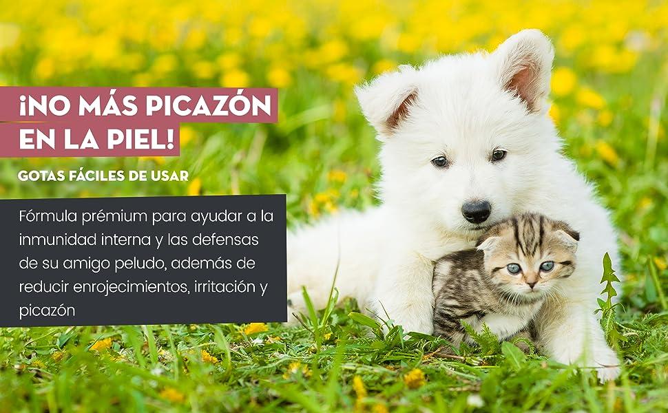 Animigo Anti Picor para Perros y Gatos | Suplemento Líquido Natural para Picores, Irritaciones y Síntomas de Alergia causados por Césped, Polen, Comida | con Ginkgo, Eufrasia y Ortiga | Gotero 50ml: